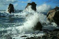 IMG_1604up (alpinebob2001) Tags: california bigsur centralcoast garapatabeachstatepark sobranescove