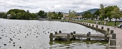 Rotorua Lake Park