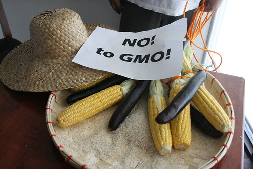 groups warn of gmo expansion in the phils (4)