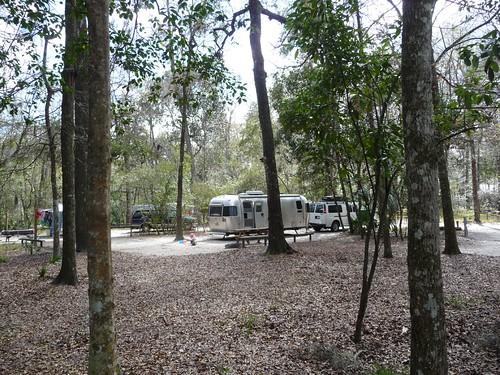manatee springs campsite.