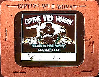 CAPTIVE WILD WOMAN (1943) Slide