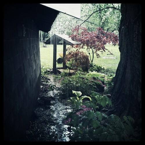 Steady rain