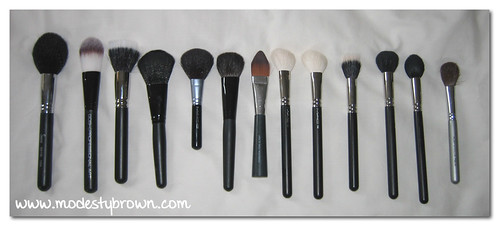 face brushes1