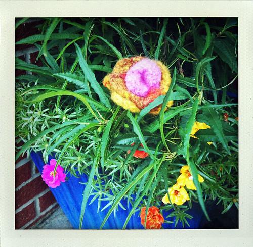 Yarn Bomb Felted Flower in flower pot