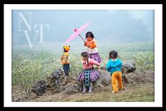 Sắc màu Phiêng Cành (Vinh.NT photo - 0989.4594.88) Tags: mocchau son la vietnam sơnla phiêngcành travel children