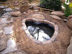 Pond 2.0