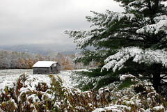 classic WV snowy hills (Anitab) Tags: snow tree fall misty barn westvirginia