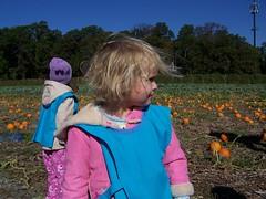 Q3 in the pumpkin patch