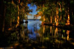North Florida - a quick stop to catch the light (MDSimages.com) Tags: travel reflections nikon florida swamp topaz stjohnsriver stlawrenceriver photopainting travelphotography northernflorida paintereffect michaelsteighner mdsimages topazsimplfy