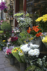 Florist - Ile St-Louis (nina's clicks) Tags: travel flowers paris france shop canon shopping florist shopfront ilestlouis fleuriste patricallain