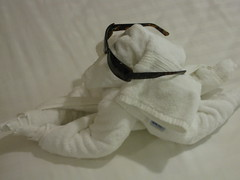 Towel Animals #