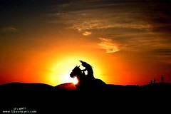 Knight In SunSet ( [ Libya Photographer ]) Tags: sunset horse caballo cheval la photo ross flickr foto first an mia knight su prima libya cavallo pferd  libyan on in libia libye  libi libyen   lbia my kavallerie reiterei libi  libija geogr  nc   sgebock     lbija  liiba    lba