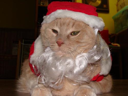 Toivo Claus.