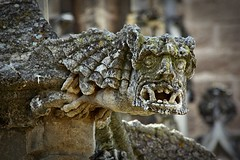 Mostrose formas (Kalos eidos) Tags: statue stone sevilla spain catedral andalucia gargoyle espana andalusia pietra estatua statua spagna cattedrale piedra siviglia