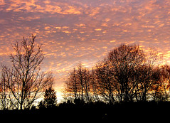 spectacular clouds (Per Ola Wiberg ~ Powi) Tags: november sunset nature beautiful clouds sweden 2006 harmony 1001nights shiningstar solnedgng musictomyeyes moln fotoclub goldheart hiddentreasure eker topshots tappstrm golddragon withsky royalgroup peaceaward heartawards exemplaryshotsflickrsbest artistsoftheyear flickrsheaven theperfectphotographer flickridol naturestyle flickrestrellas ilovemypics beautifulshot abovealltherest naturestreasures panoramafotogrfico doubledragonawards angelawards zensationalworld ablackrose holycreationsofnature platinumpeaceaward universeofnature passionoftheheart flickrsgottalent bestpeopleschoice creativephotographeronflickr 1001nightsmagiccity flyingcarpetclub cluboftheprestige mygearandme moongoddessawards gloriousphotos thebigfriendtree goldenuniverse fotografaynaturaleza parisinitafriendsnew