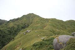 Yakusima|CANON EOS 7D