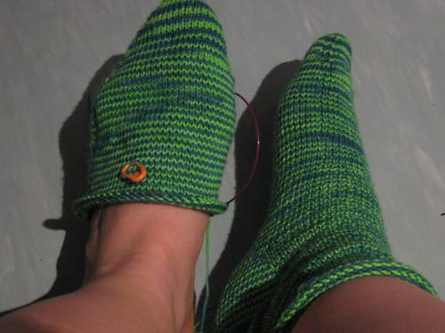 Sasha Socks