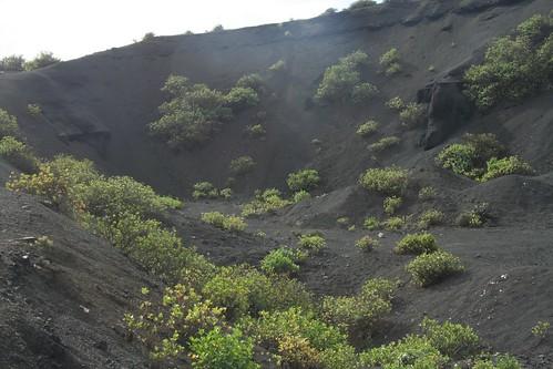 A quarry.