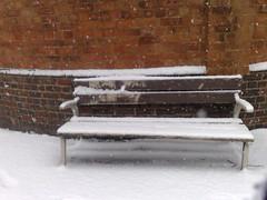 b29 snow bench