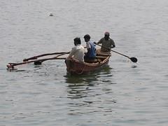 Fishing for food (Dr Sapna) Tags: maharashtra konkan
