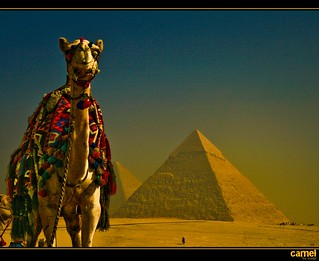 pyramid...smile