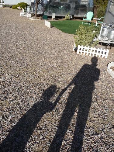 shadows at the shady dell.