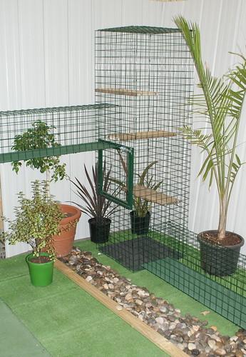 cat enclosures wallpaper