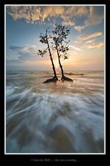 ... wave is coming close ... (liewwk - www.liewwkphoto.com) Tags: ocean sunset sun water set landscape coast seaside sand view salt surface malaysia beast 风景 selangor 摄影 banting 自然科学 pantaikelanang 自然环境 景色摄影 liewwk wwwliewwkphotocom