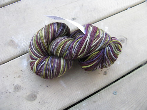 Wounded in the Act of World Domination (Donut) Sock yarn