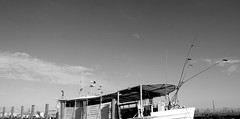 IMG_5327 (New Orleans Lady) Tags: copyright parish river boat louisiana all gulf  images crescent jordan h coastal rights copy reserved allrightsreserved alysha fertile fisheries c plaquemines plaqueminesparish ntga 20032013 allimages20032013alyshahjordan