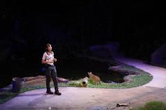 030310 - day 3 - night safari singapore zoo (74) (nate.cho) Tags: zoo singapore singaporezoo nightsafari