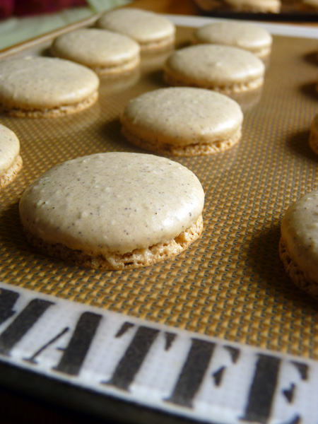 baked macarons