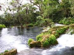 IMG_2735 (Ezniter) Tags: waterfall cascada huasteca sanluispotosi tamul tamasopo