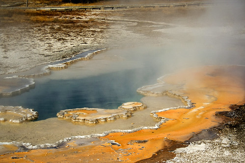 Yellowstone Hot Spring Runoff