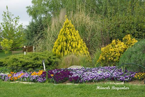 botanik2007-15