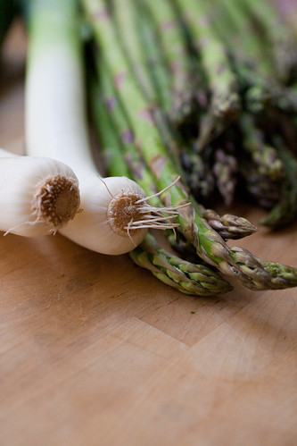 Asparagus & Leek 3