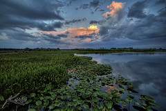 Green Cay Wetlands Sunset 01 (Captain Kimo) Tags: sunset lake water clouds photoshop landscape florida wetlands lilypads preserve hdr cs4 photomatix hdrphotography boytonbeach hdrcanon greencaywetlands digitalhdr topazclean topazadjust topazdenoise