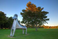 Kuri Topiary (russellstreet) Tags: sunset newzealand sculpture sun auckland hdr highdynamicrange nzl aucklandregion aucklandbotanicalgardens stevewoodward sculpturesinthegarden2007 stoneleighsculpturesinthegarden2007 kuritopiary manakaucity