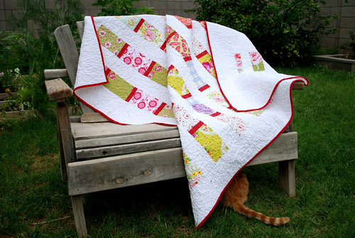 quilt and kitty