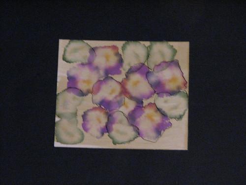 ai violets 013
