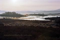glencoe island 4 (mikek666) Tags: lake lago see meer dam lac reservoir barragem loch damm presa llac diga llyn ibon göl jezero baraj argae λίμνη urtegia φράγμα