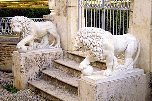 lions-in-Valencia