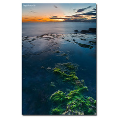 Silenced (SergioTudela) Tags: longexposure blue sunset sea espaa seascape cold verde green beach sergio rock azul stone atardecer mar playa lee creativecommons fro 2009 roca mlaga piedra largaexposicin supershot a900 leefilter paisajemarino abigfave pendelcuervo sal20f28 theunforgettablepictures laaraa sony20mmf28 sonya900 sonyalpha900 sergiotudela lee09nd sergiotudelacom sergiotudelaphotocom payadelaaraa