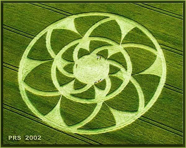 crop-circle37