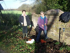 Community volunteers planting 350 daffodil bulbs around the Wood Lane bridge