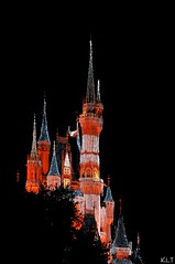 DSC_3813 (G1 Photo) Tags: flickr nikkor disneysmagickingdom oc6 nikond300 1photo onephoto 1photooc6 onephotooc6