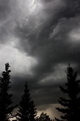 Storm Light (METAL_FIRECRACKER) Tags: light sky canada storm rain weather clouds dark skies edmonton wind atmosphere alberta lightning metalfirecracker