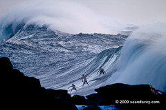 Sean Davey - Waimea Trio (Sean Davey Photography) Tags: color horizontal gold hawaii oahu northshore waimeabay goldenlight greenenergy seandavey oceanpower 011110 powerfulwaves surfnorthshore picturessurfers wavesenergy seawaveenergy oceanenergy surfbigwave bigwavesurfers biggestwaves jan10th2010
