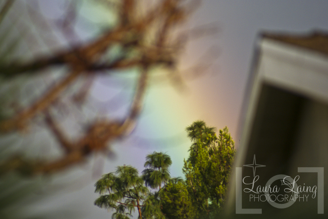 Rainbow003