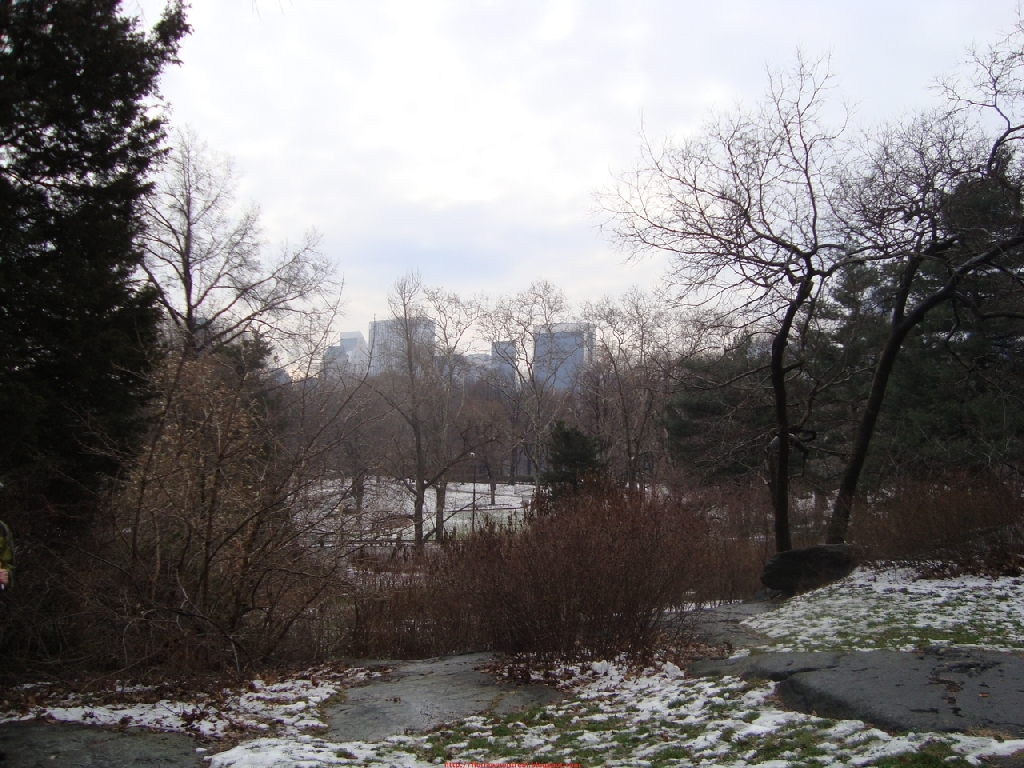2010-01-01_012